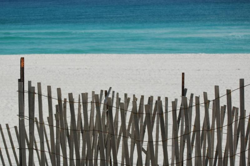 Another Day in Paradise - Image 1 - Miramar Beach - rentals