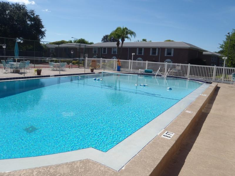 Year- round Heated Pool - Beautiful Relaxing Vacation Spot - Saint Petersburg - rentals