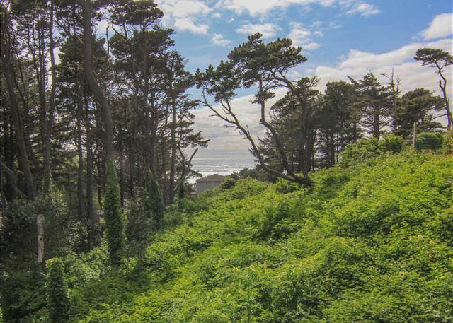 Quiet Forested Setting Minutes from the Beach! - Image 1 - Lincoln City - rentals
