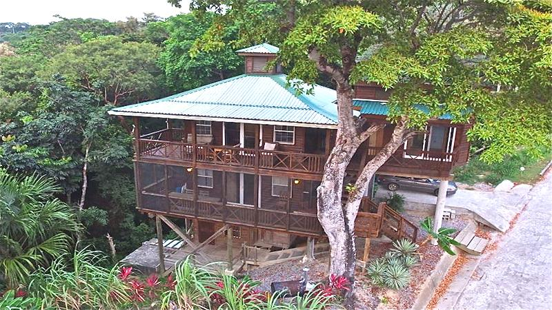 Treehouse Front Areal View. - Treehouse - Roatan, Honduras. Spectacular Views! - West Bay - rentals