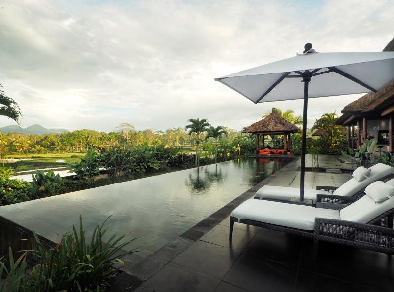 The villa and the rice field view, the view is indeed amazing - Villa Rumah Lotus Ubud luxurious,private,2 bedroom - Ubud - rentals