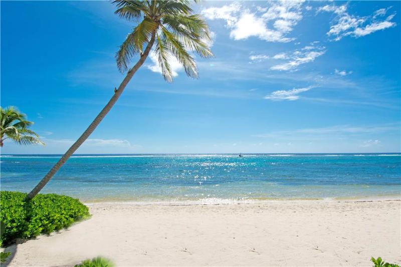 Caribbean Paradise 9 - Image 1 - Grand Cayman - rentals