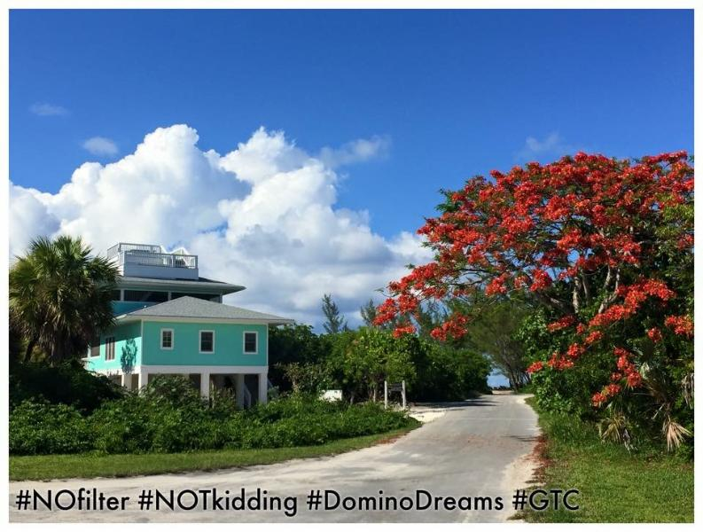 Elevated Island Living! Stunning views from roof deck! - New! Domino Dreams   Elevated Island Life! - Green Turtle Cay - rentals