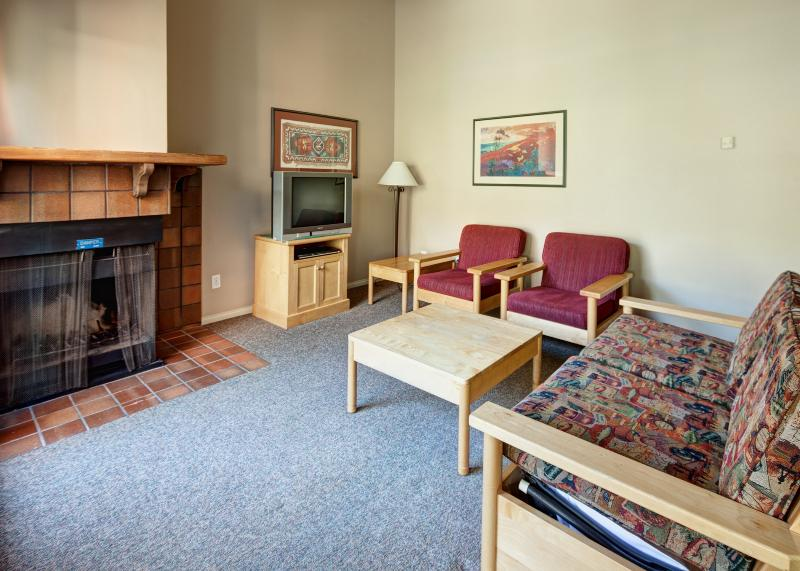 This condo has all of the conveniences you need - Panorama Lower Village Toby Creek Lodge 1 Bedroom Condo - Panorama - rentals