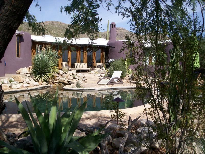 Desert Moon-Main House-Architectural Gem! - Image 1 - Mount Lemmon - rentals