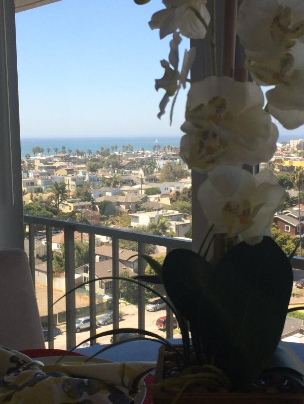 EXQUISITE FURNISHED 1 BATHROOM STUDIO  APARTMENT - Image 1 - Marina del Rey - rentals