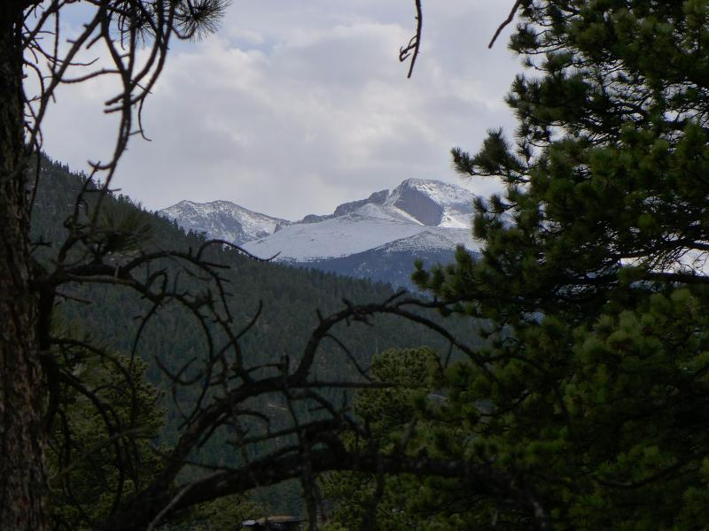 Modern Mountain Home with Majestic Views - Image 1 - Estes Park - rentals