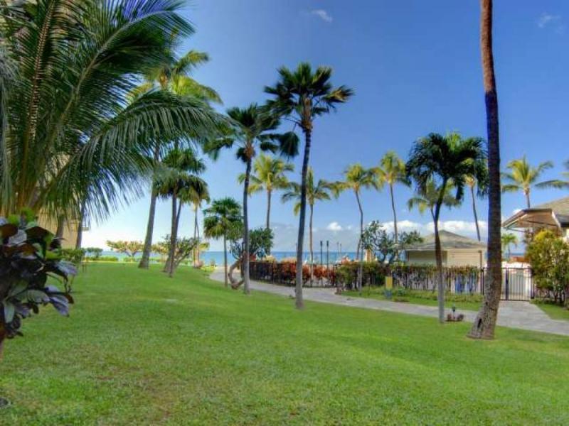 Kaanapali Shores 155 - Image 1 - Kaanapali - rentals