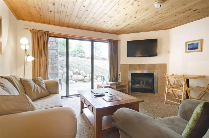 Scandinavian Lodge and Condominiums - SL101 - Image 1 - Steamboat Springs - rentals