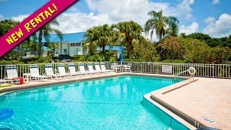 New Rental! - Sandpiper - Bradenton - rentals