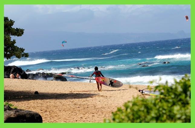 Ho'okipa Beach Park    - Maui B&B Vacation Rental - Haiku - rentals