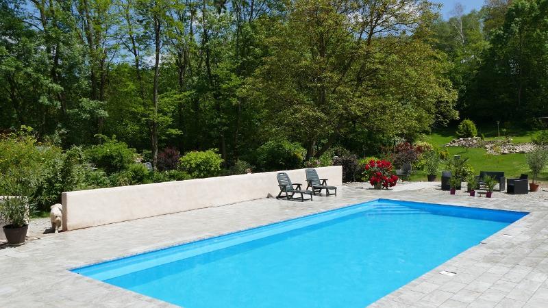 12x5m heated pool - La Scierie - Mill Gite - Serres-sur-Arget - rentals