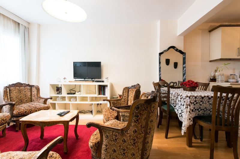 Living Room - Whole flat in Taksim Cihangir 3+1 - Istanbul - rentals