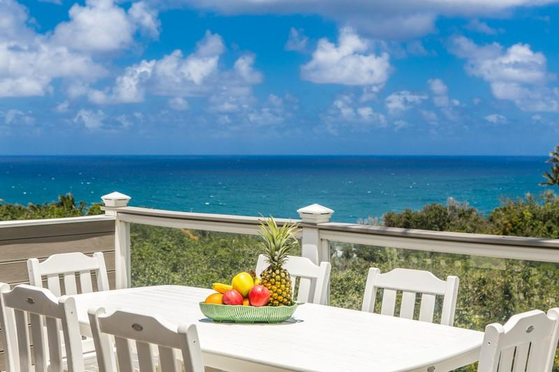 The Dolphin Hale - The Dolphin Hale - Princeville - rentals