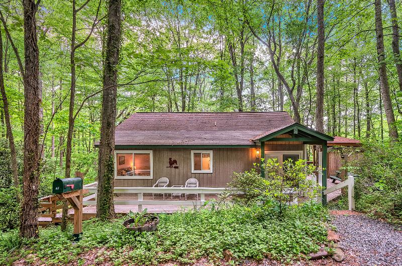 Smoky Mountain Treehouse - Smoky Mountain Treehouse - Cozy, Clean, Hot Tub - Maggie Valley - rentals