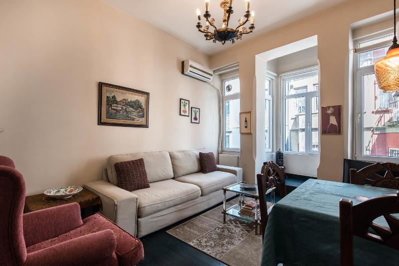 Living Room - Taksim Apartment 4-in the Heart of the City - Istanbul - rentals