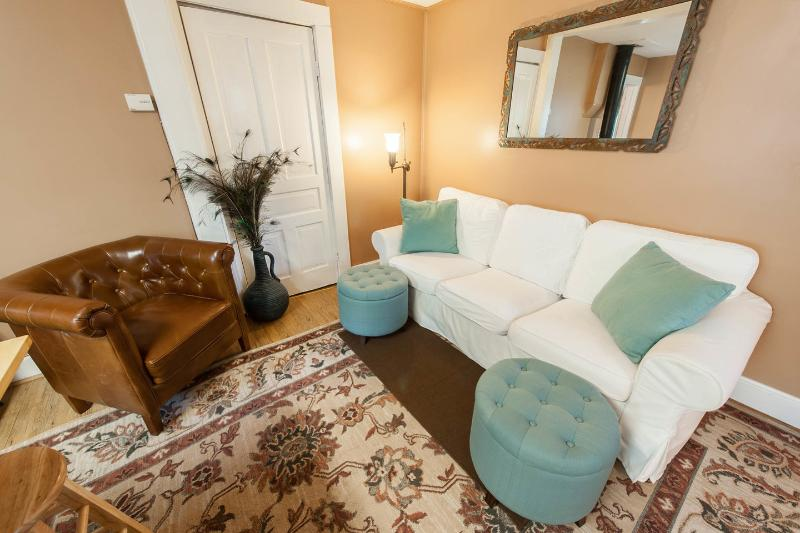 Living Room - Asheville's Historic Montford Little Cottage - Asheville - rentals