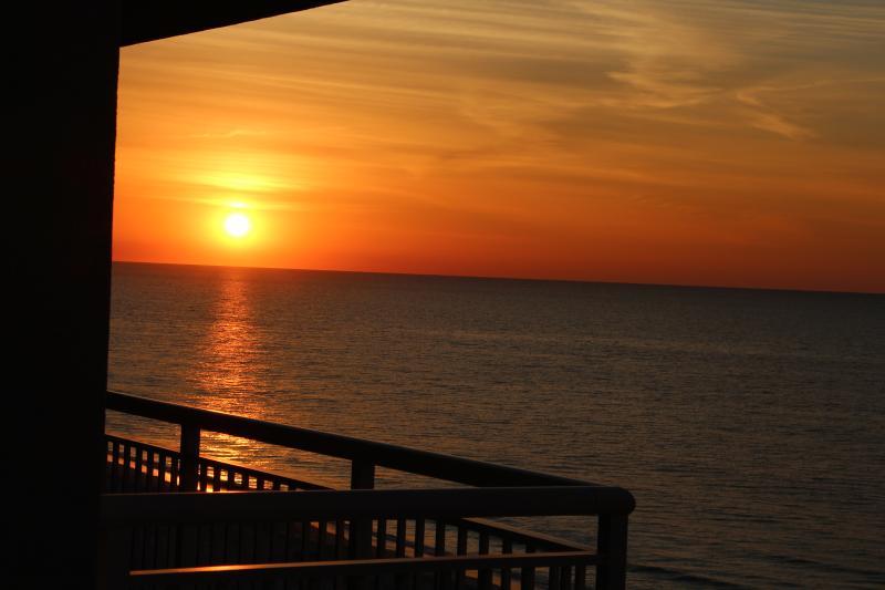 Pristine Ocean Front Myrtle Beach Condo - Image 1 - Myrtle Beach - rentals