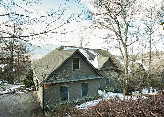 Red Plum Town Home - Image 1 - Black Mountain - rentals