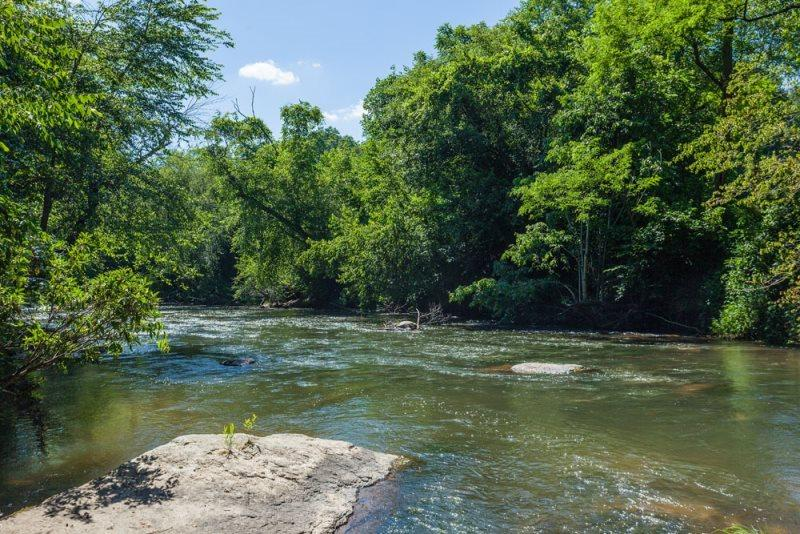 Cartecay River in back yard - Cartecay Fever - Brand New River Front Cabin - Ellijay - rentals