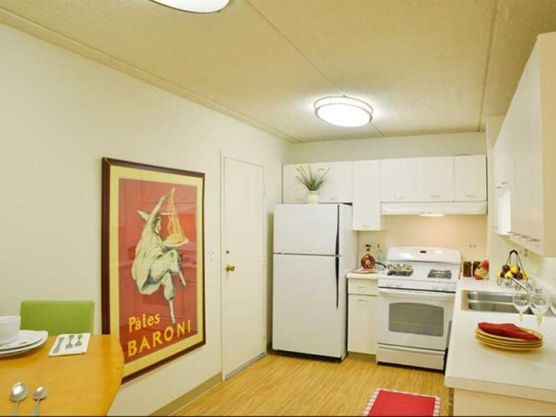Furnished 1-Bedroom Apartment at N East River Rd & W Catalpa Ave Chicago - Image 1 - Park Ridge - rentals