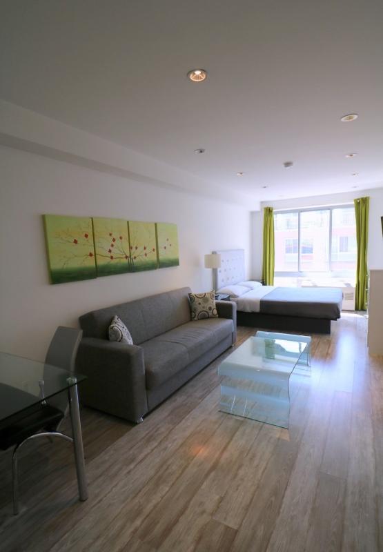 Stylish yet Comfortable Studio Apartment in New York - Image 1 - Weehawken - rentals