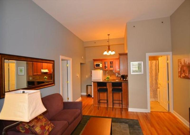 Furnished 1-Bedroom Apartment at N Dearborn St & W Maple St Chicago - Image 1 - Chicago - rentals