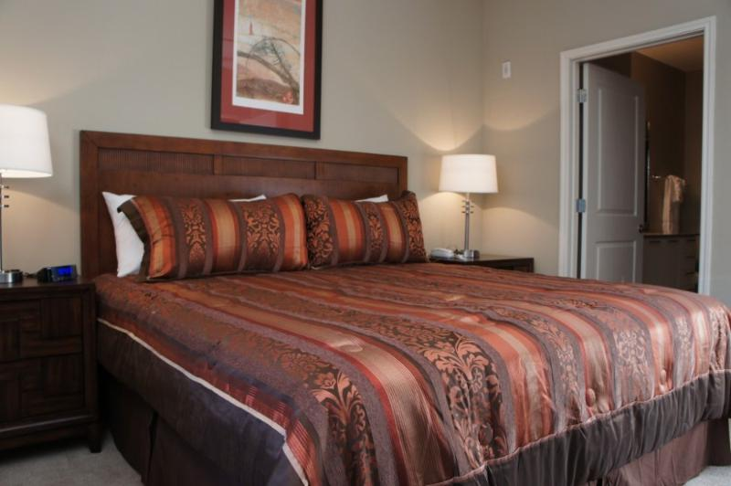 Amazingly Furnished 1 Bedroom 1 Bathroom Apartment in Houston - Image 1 - Houston - rentals