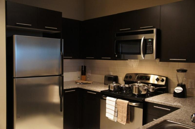 Light and Lovely 2 Bedroom 2 Bathroom Apartment in Houston - Image 1 - Houston - rentals