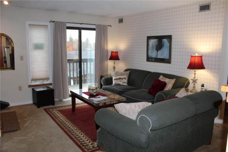 Ski-in/Ski-out mountain-side condo close to everything! - Image 1 - Ludlow - rentals