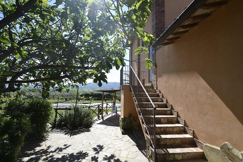 Casa Flora B - Image 1 - Castiglione Del Lago - rentals