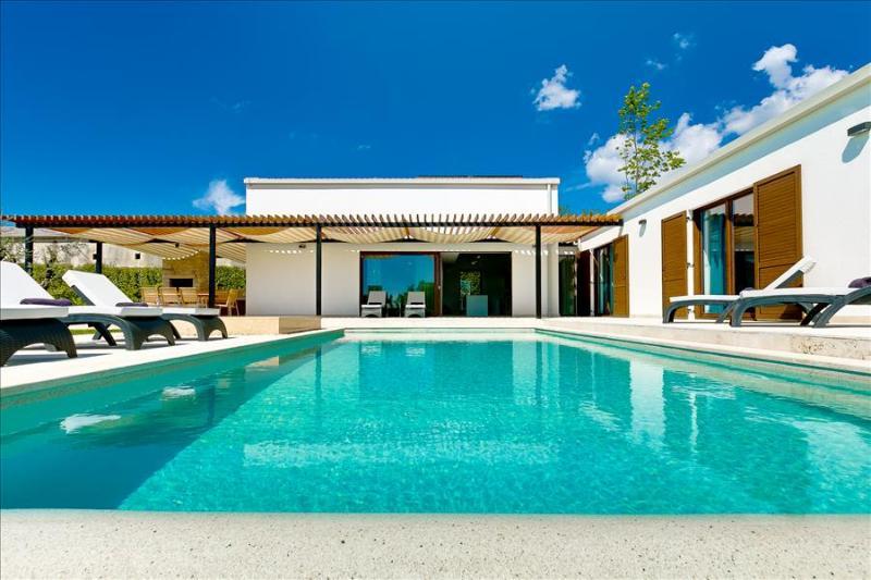 Beautiful newly bulit modern villa with private pool - Image 1 - Sveti Petar u Sumi - rentals