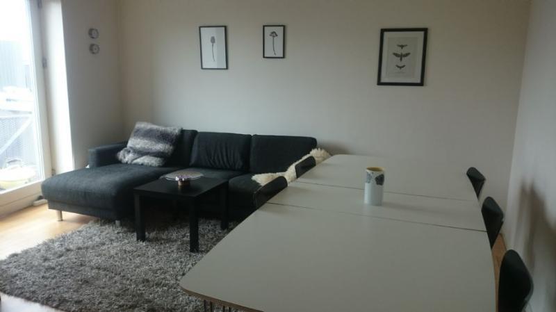 Carl Jacobsens Vej Apartment - Bright modern Copenhagen apartment at Ny Ellebjerg st - Copenhagen - rentals