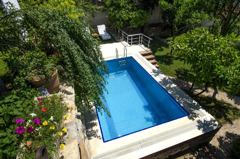 Swimming pool in spring - Goldsmith House, Selcuk, (Ephesus) Turkey - Selcuk - rentals