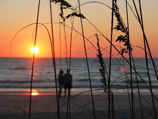 Most sought after - SAVE $400/wk!Steps to beach-Dock SERENE WiFi Bikes - Bradenton Beach - rentals