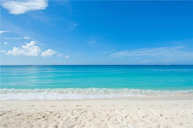 White Sands #16 - Image 1 - Grand Cayman - rentals