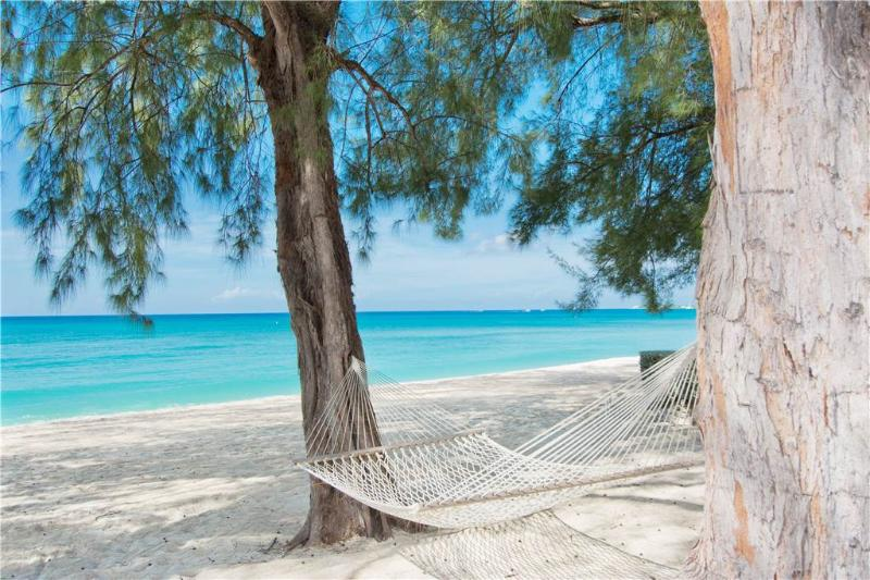 White Sands #4 - Image 1 - Seven Mile Beach - rentals