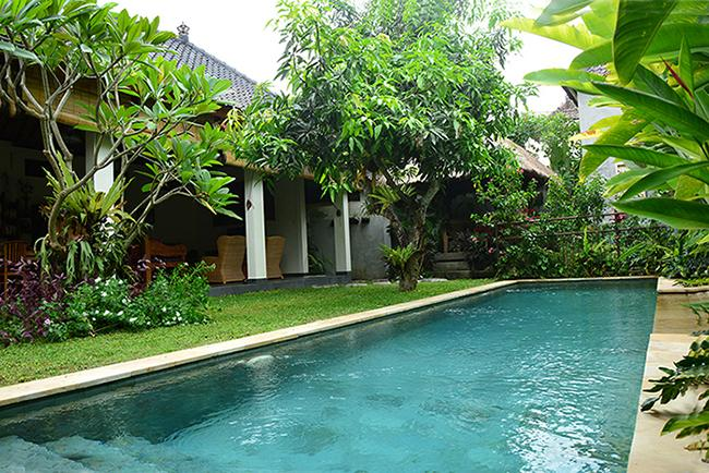 The 10 meter x 2.5 meter pool is inviting from everywhere in the villa. - Villa Mangga - Private and spacious - Ubud - rentals