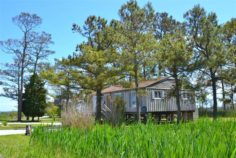 Southern Dream - Image 1 - Chincoteague Island - rentals
