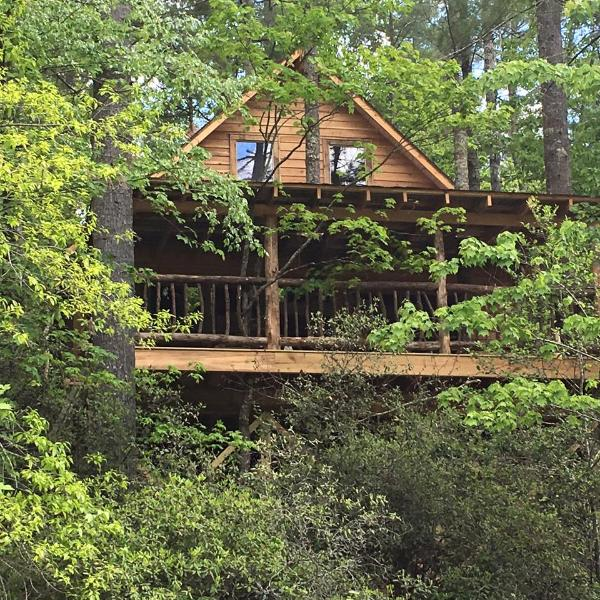 Looking House For Rent: Tallulah Falls Tree House With 2 Bedrooms