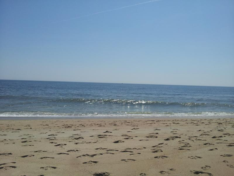 Condo has a whole wall of glass to view the beaurtiful ocean! - Fabulous Oceanfront 1 Bedroom Condo at Sea Colony - Bethany Beach - rentals