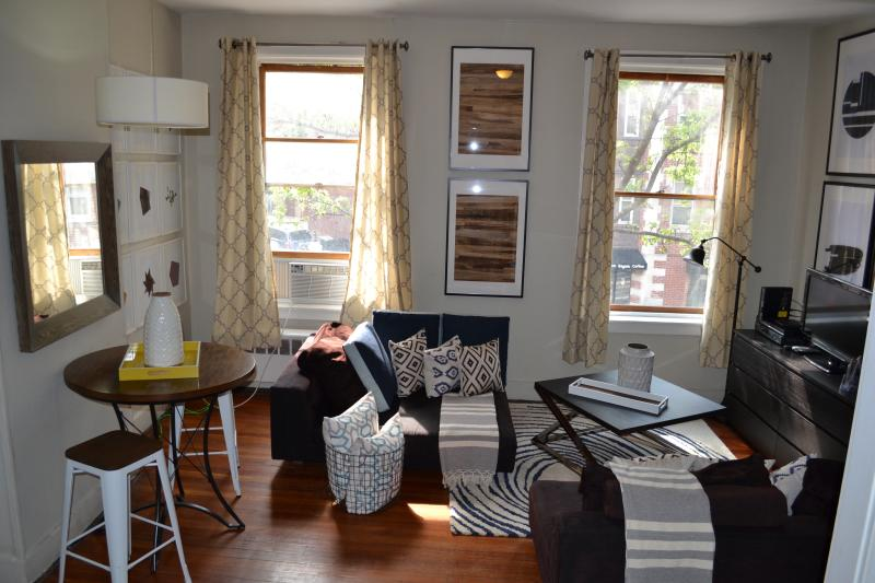 Best priced Beautiful 2 beds sleep up to 6 (h2d) - Image 1 - Boston - rentals