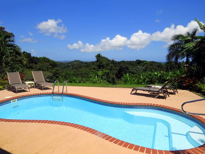 Private Pool with a View plus BBQ, Fridge, Full Bathroom - #1 Rated Rental in PR! Coquis Hideaway @ El Yunque - Rio Grande - rentals