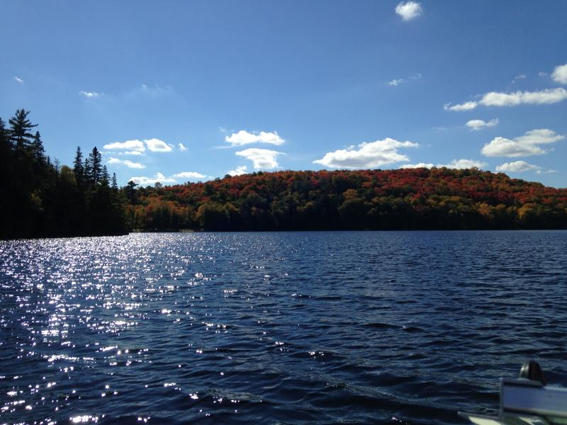 view from dock on beautiful sand lake - Four Season Muskoka Lakefront Rental - Kearney - rentals