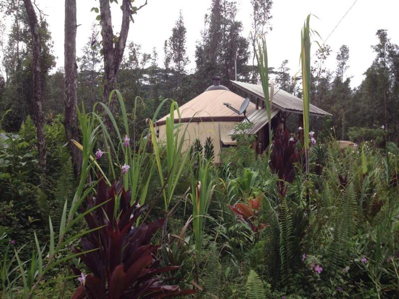 Front entrance view. - Chic Eco Yurt Home + Gardens - Pahoa - rentals