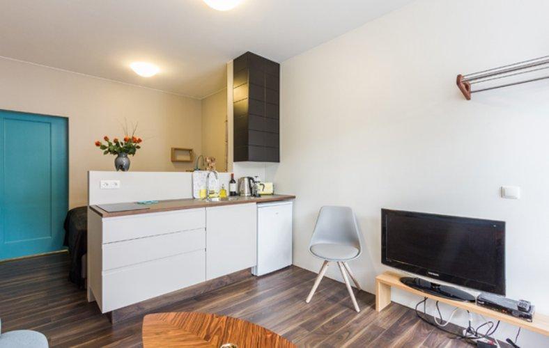 Town Apartment Studio - Image 1 - Reykjavik - rentals