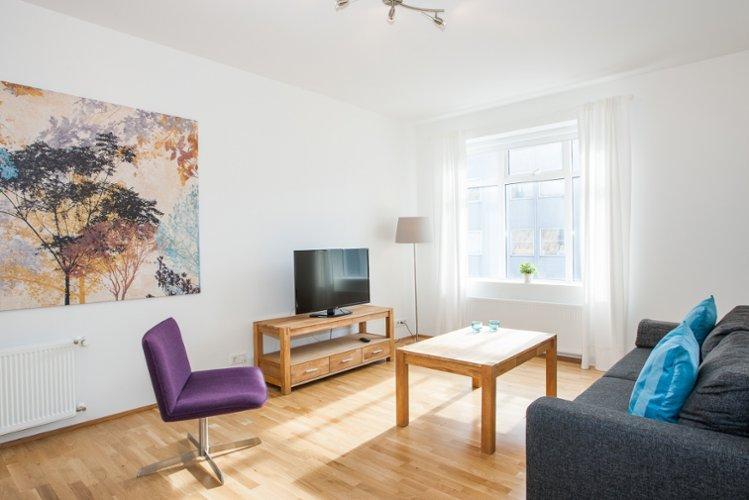 Hverfisgata 1 Bedroom Apartment - Image 1 - Reykjavik - rentals