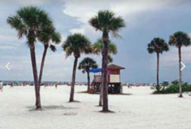 Gulf Beach, Pool  And Walk To Siesta Key Village - Image 1 - Siesta Key - rentals