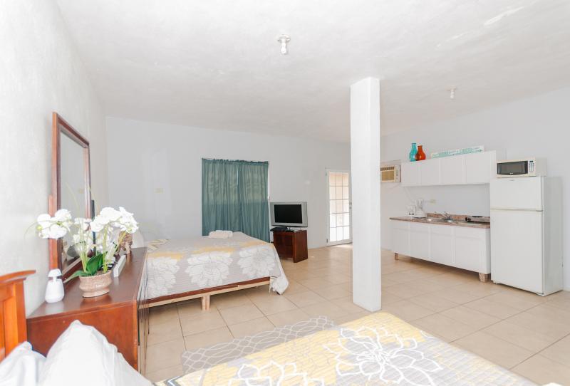 Sol del Atlantico 102, 1 Bedroom Studio Apartment - Image 1 - Arecibo - rentals
