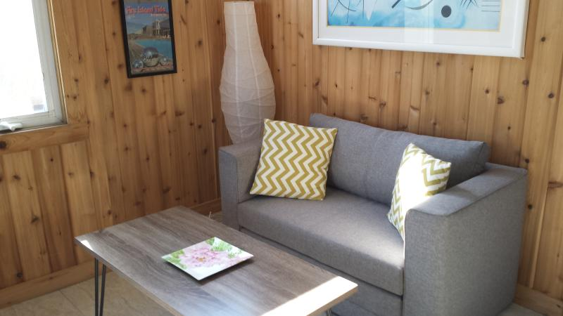 sofa bed, TV, A/C, heat - Fabulous cabana on the beach near NYC - Fire Island Pines - rentals